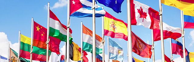 Comercio internacional e inversión extranjera